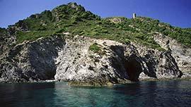 Plus d'informations sur Île Gorgona