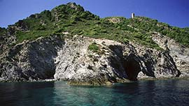 Informazioni riguardo: Gorgona Island